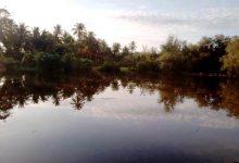 Photo of Areal Persawahan di Dusun Lamkuta Dilanda Banjir