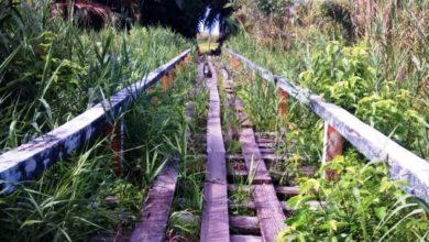 Photo of Warga Samatiga Berharap Jembatan Penghubung Diperbaiki