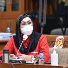 Anggota Komisi IX DPR RI Elva Hartati.