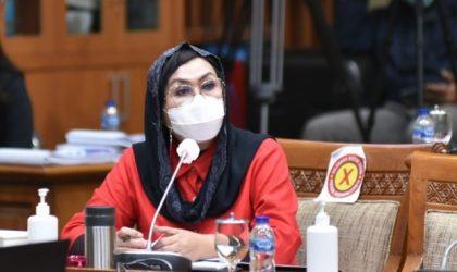 Anggota Komisi IX DPR RI Elva Hartati